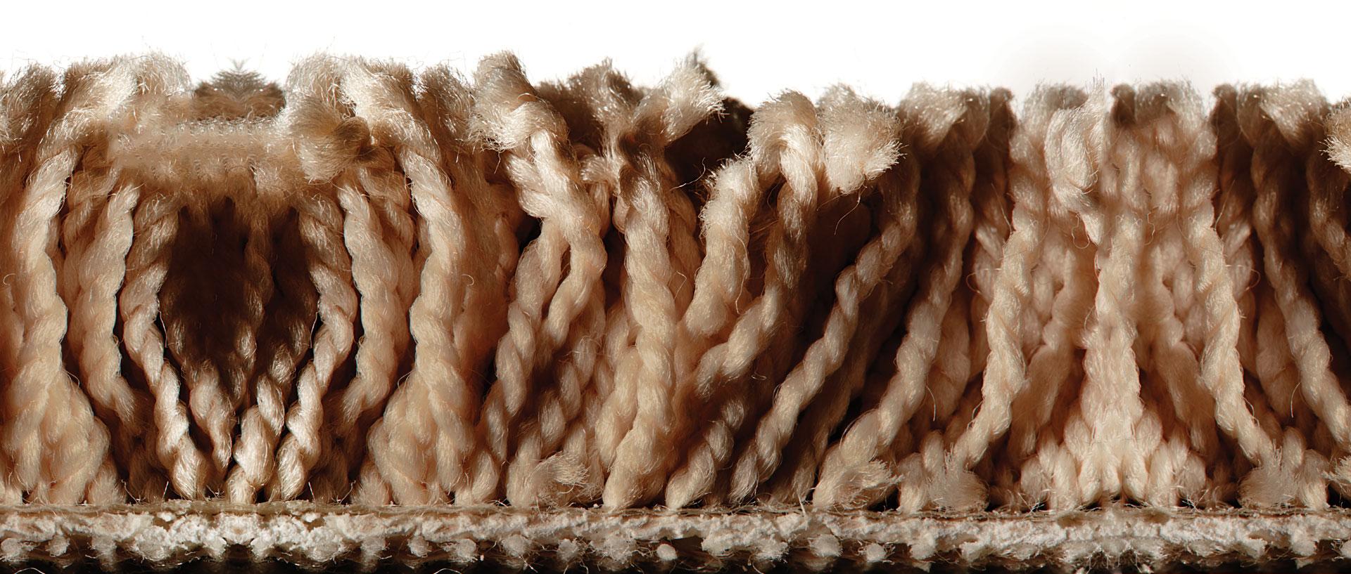 Super Vacuums For Plush Carpet Consumer Reports Diagram Parts List Model 16991 Bissellparts Wetcarpetcleaner