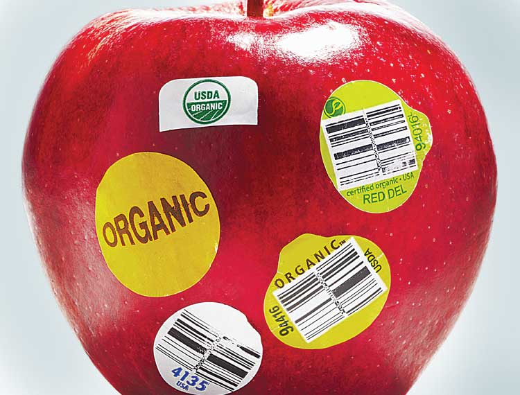 Amateur Engineers Join Consumer Reports >> Food Fights Fouls Victories Consumer Reports