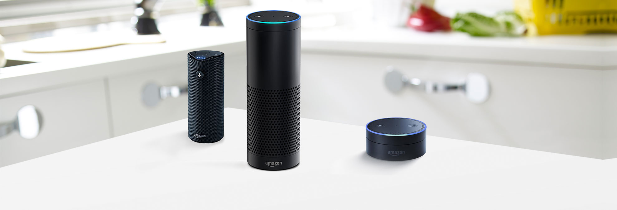 Amazon Echo products face competition from Google Home.
