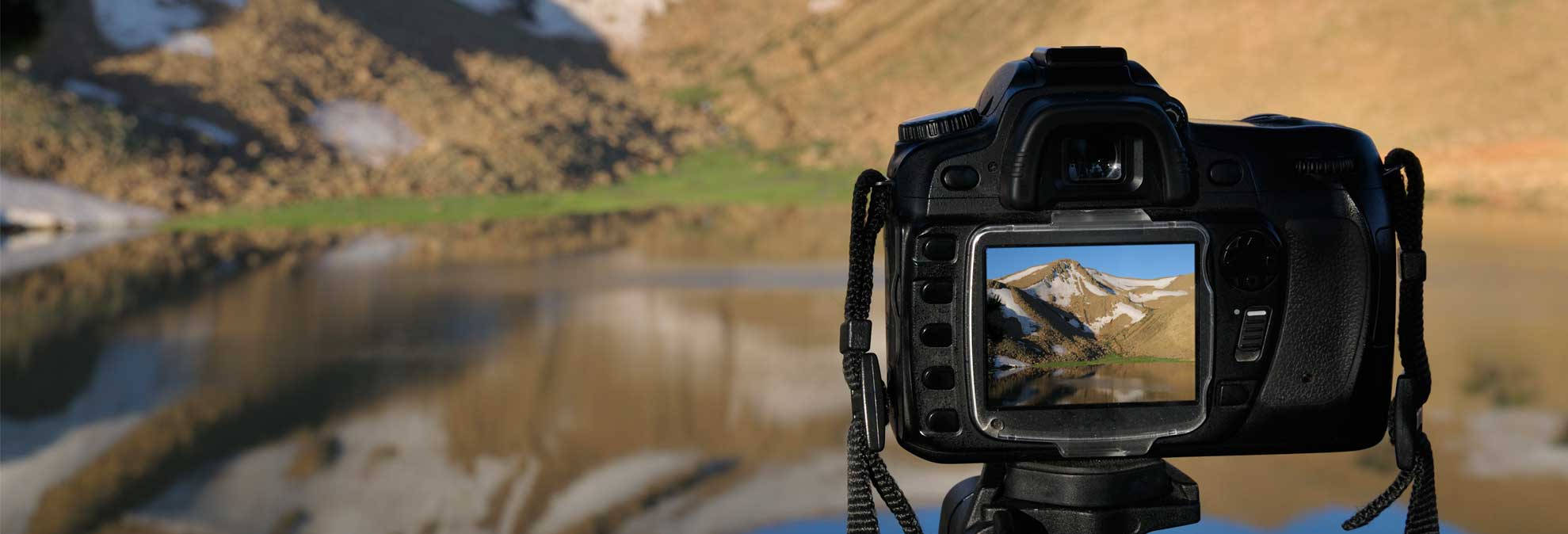 Best camera buying guide consumer reports for Camera camera camera