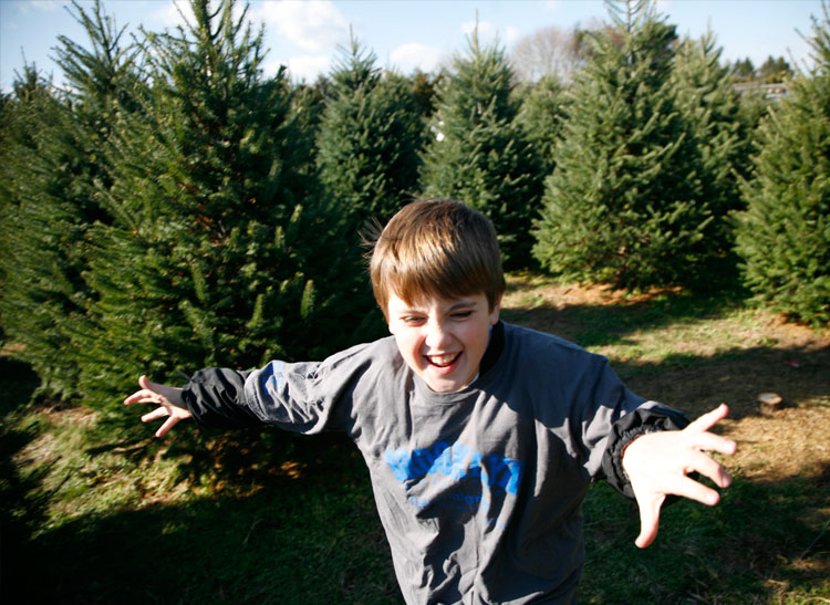 This is a photo of a boy and Christmas Trees