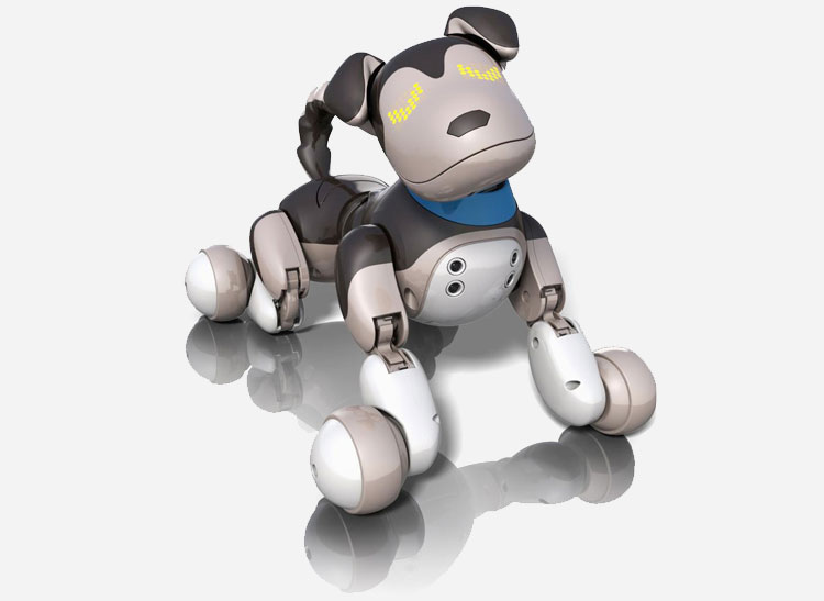 A picture of the Zoomer Shadow robotic dog