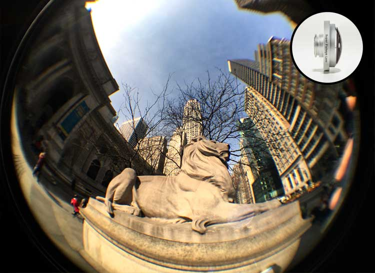 A photo of a stone lion shot with a fisheye mobile camera lens manufactured by Photojojo