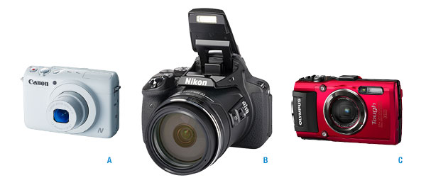 Three cameras: A basic point-and-shoot, a superzoom point-and-shoot, and a waterproof point-and-shoot.