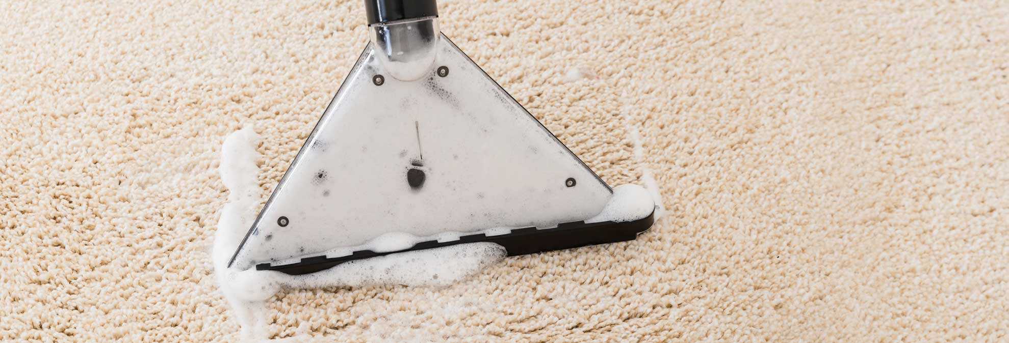 Best Carpet Cleaner Buying Guide Consumer Reports