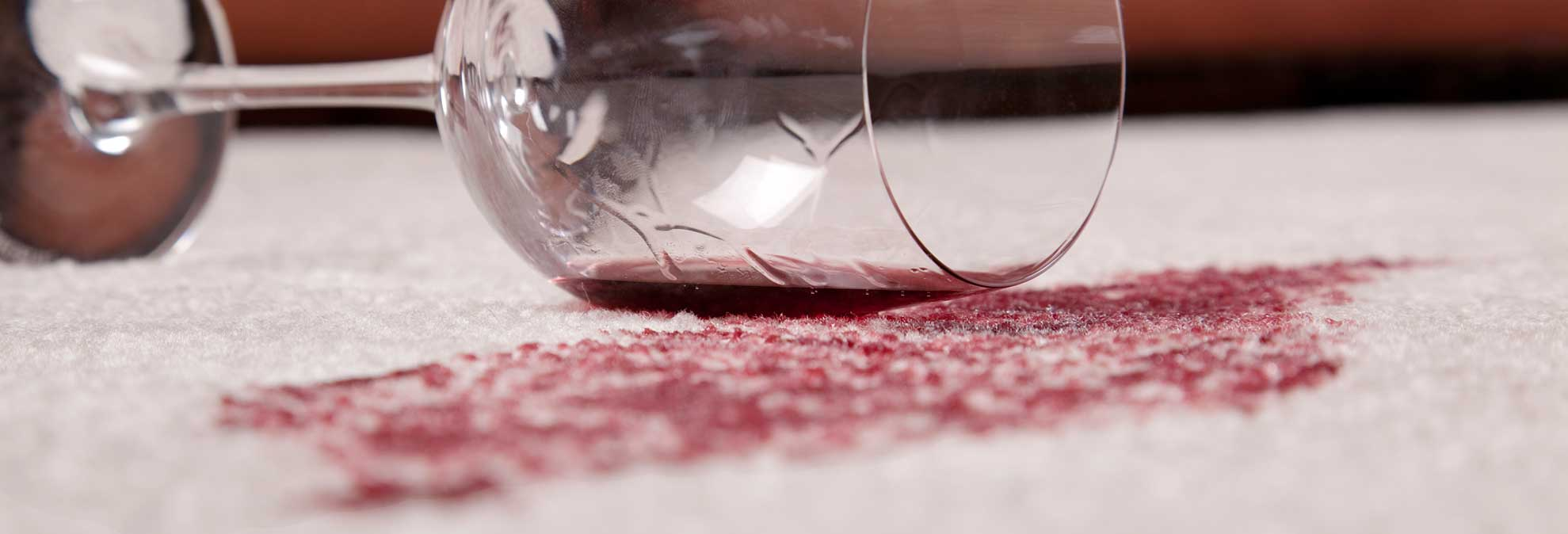 Best Carpet Stain Remover Buying Guide Consumer Reports