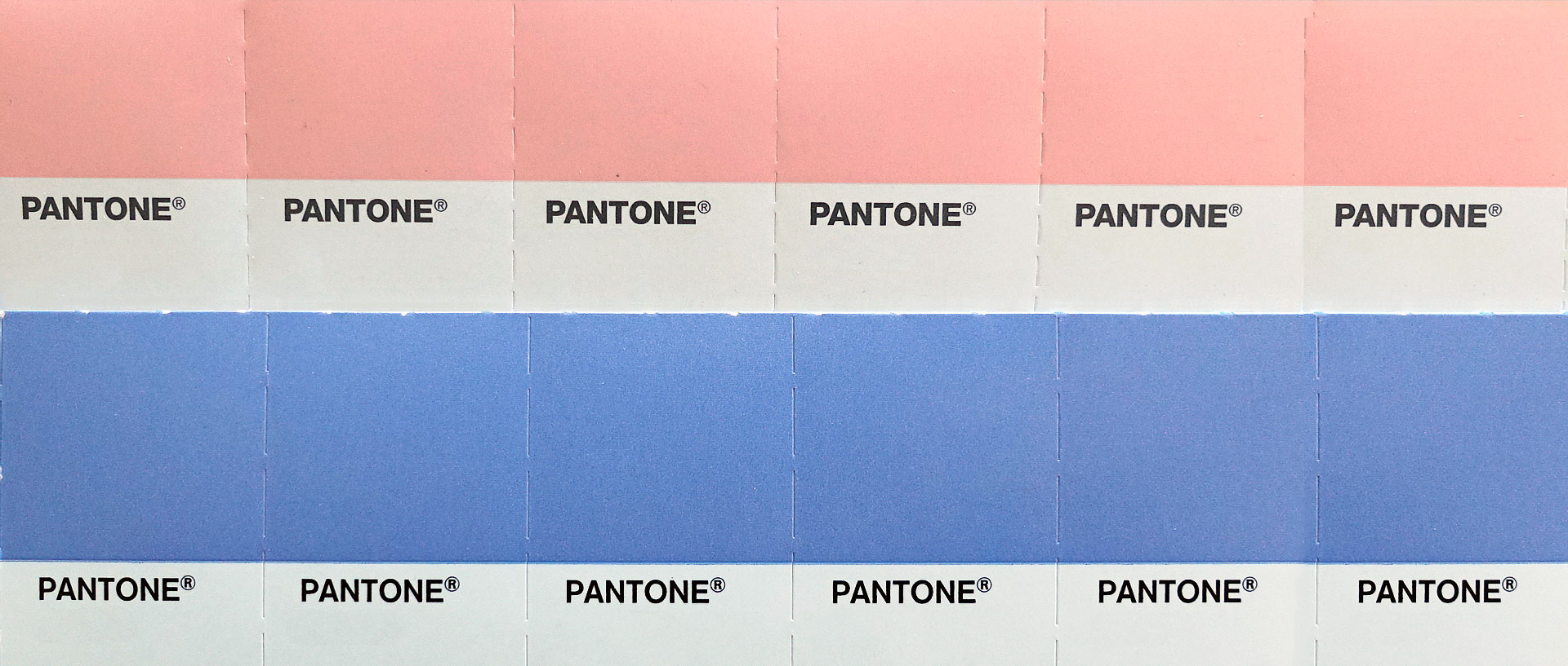 Pink And Blue Are Pantone S 2016 Colors Of The Year