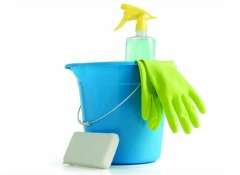 10 Cheap Products for Spring Cleaning Tips - Consumer Reports
