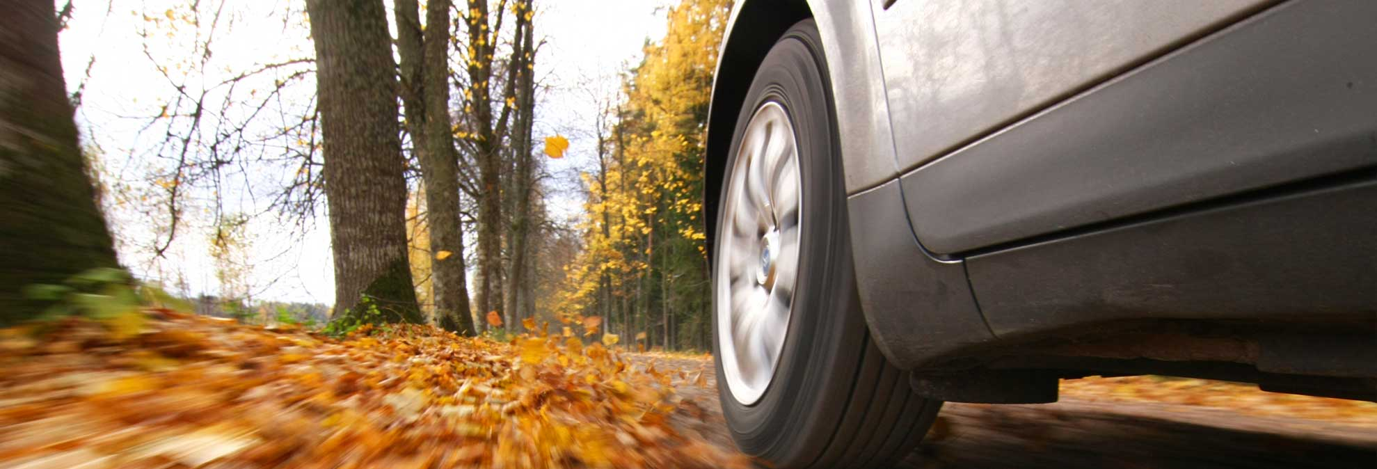 Fall Cleanup And Maintenance For Your Car Consumer Reports