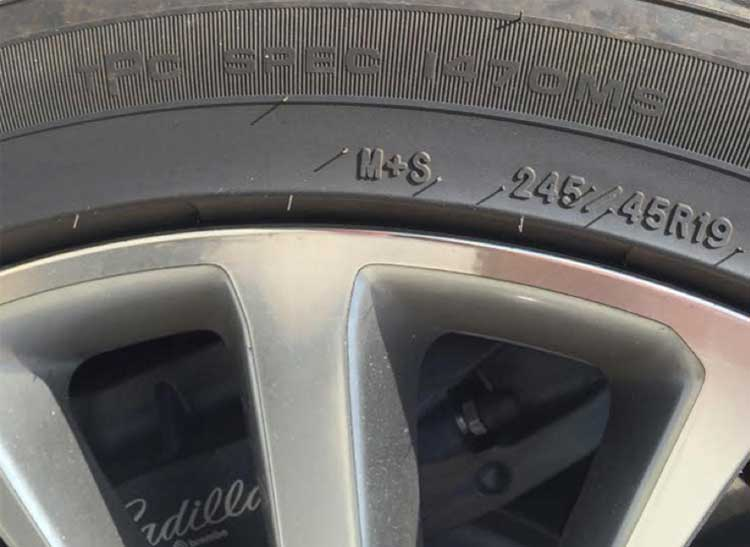 TPC spec embossed on tire sidewall.