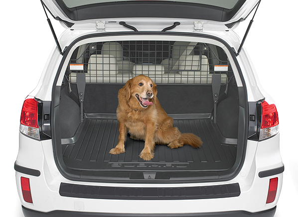 pets and car safety driving with pets consumer reports. Black Bedroom Furniture Sets. Home Design Ideas