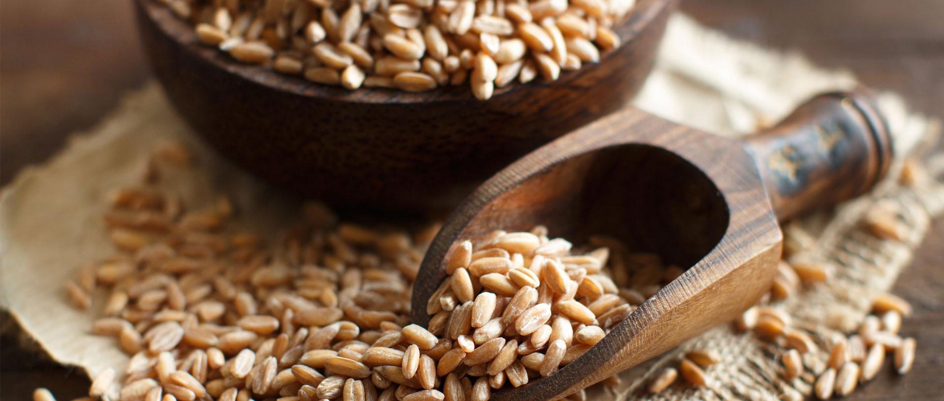 Farro Vs Brown Rice Whole Grains Consumer Reports
