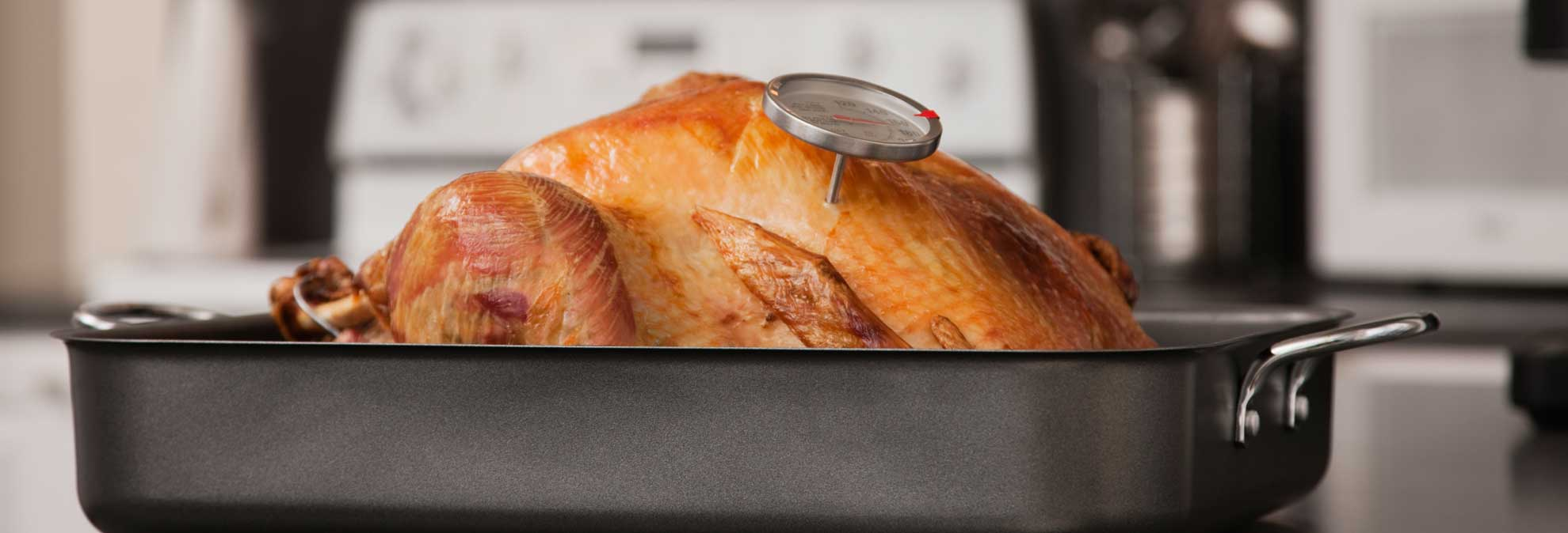 breast turkey thermometer Meat in