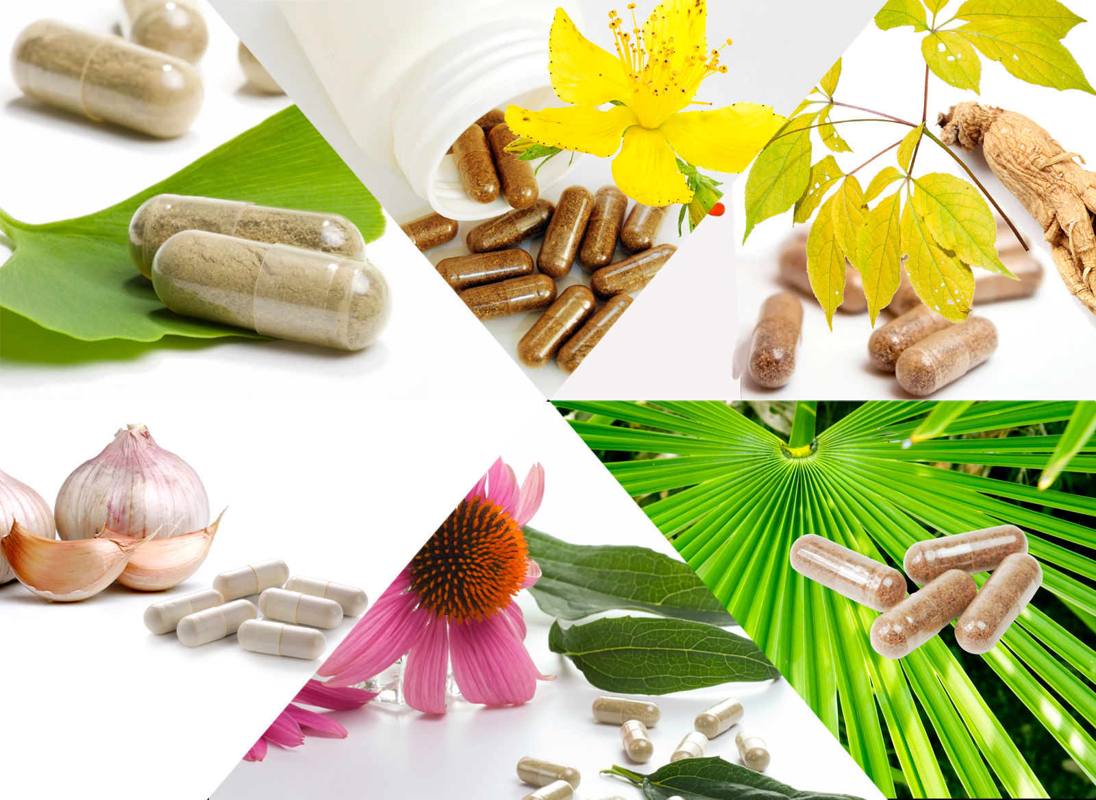Whats Wrong With Herbal Supplements - Consumer Reports-2380