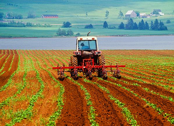 Glyphosate Pesticide In Food Consumer Reports