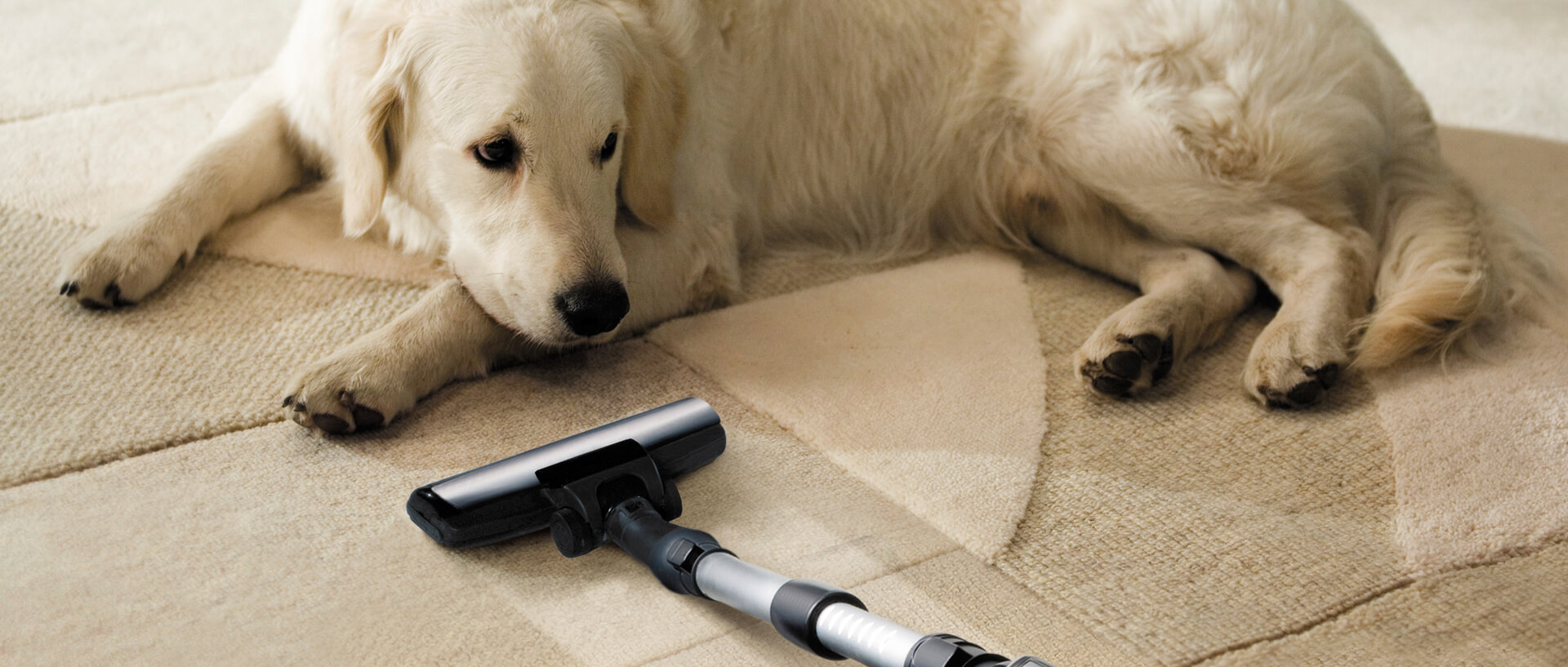 The Best Vacuums Of 2015