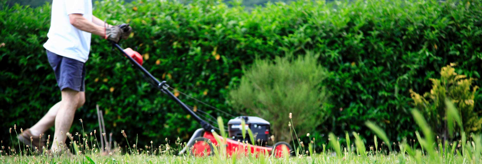 the best lawn mowers for every budget consumer reports. Black Bedroom Furniture Sets. Home Design Ideas