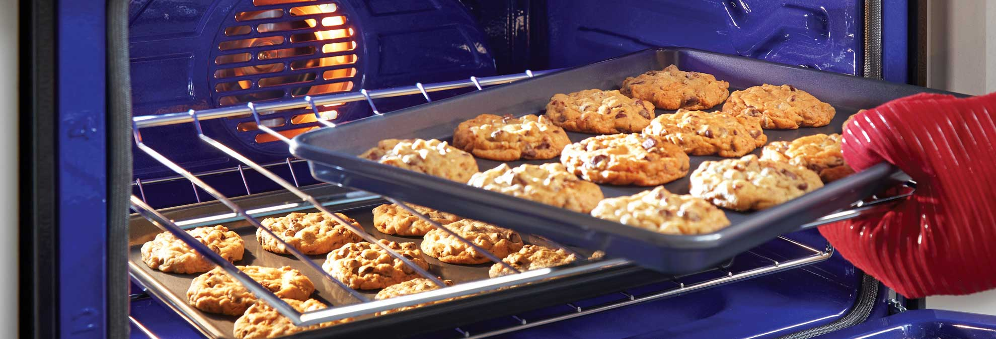 Convection Oven Cooking Tips - Consumer Reports