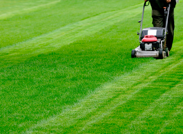 Why Your Mower Won 39 T Start Mower Reviews Consumer Reports