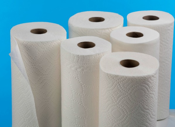 leading paper towel brands