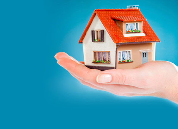 Property Insurance Consumer Guide