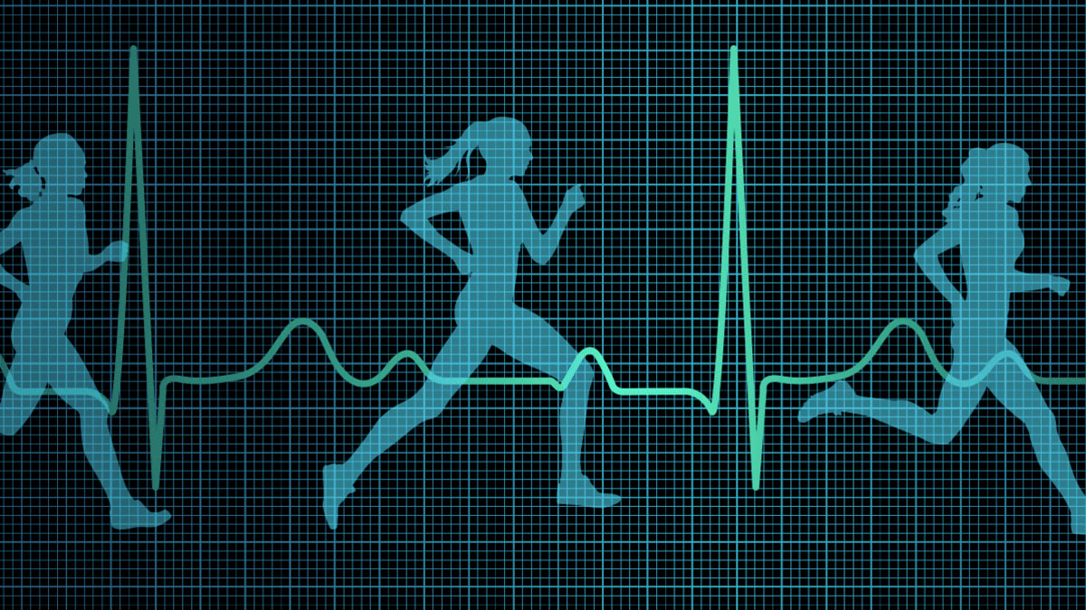 How to Use Your Heart Rate to Help You Work Out