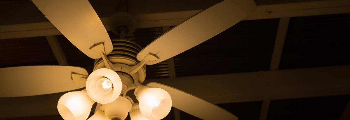 Ceiling fans add comfort and save money consumer reports ceiling fan aloadofball Choice Image