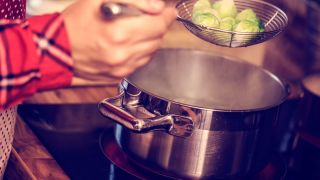 Portable induction cooktop reviews consumer report