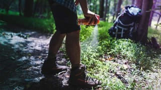 Do Natural Insect Repellents Work Consumer Reports