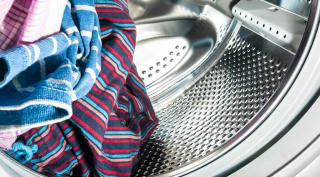 Don T Let Pet Hair Ruin Your Washer Consumer Reports