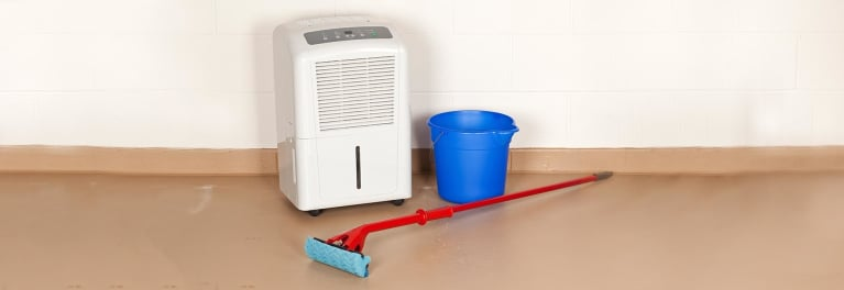 A dehumidifier is one way to get rid of dampness.