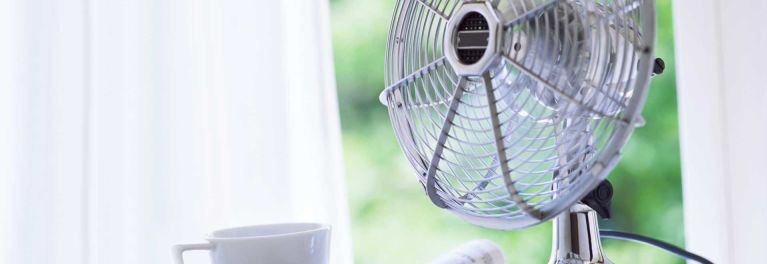A table fan for story on cleaning fans.