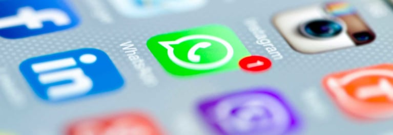 The icon for secure messaging app WhatsApp, shown on a phone screen.