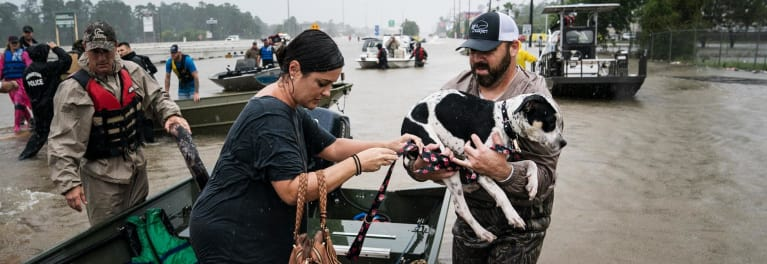 Flood victims rescuing a dog.