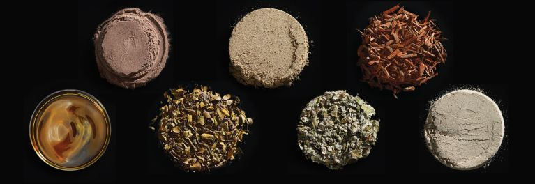 Image of supplement ingredients: Green Tea Extract, Usnic Acid, Chaparral, Coltsfoot, Comfrey, Kava and Yohimbe
