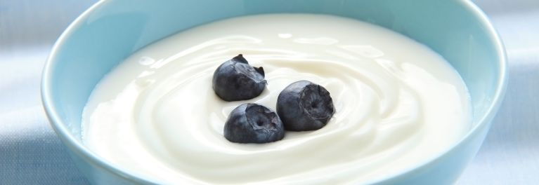 A bowl of yogurt with blueberries. Yogurt can help you meet your protein needs.