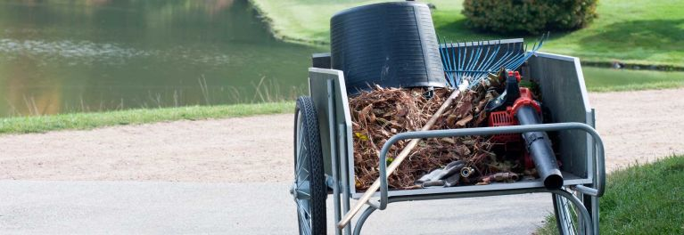 A pile of leaves in a cart.