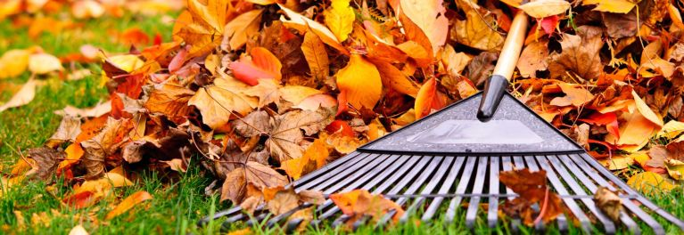 When it comes to fall leaf removal, there's the hard way and the smart way.