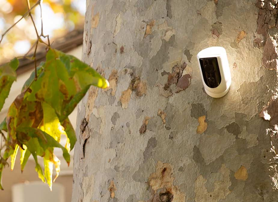 New Wireless Security Cameras Vie to Protect Your Home